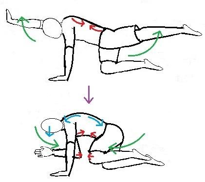 knee-to-elbow3.jpg