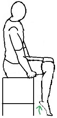 seated-calf-raise.jpg